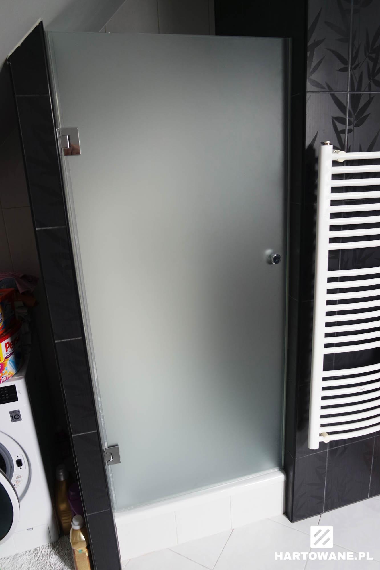 Drzwi Prysznicowe Matowe